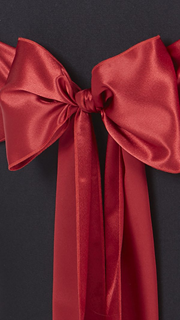 Accessories-Bows-RedSatinBow-2